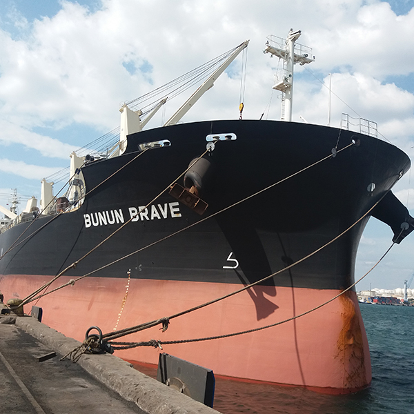 EdessoyProject, Ship Chartering